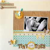 10 tiny toes   susan weinroth