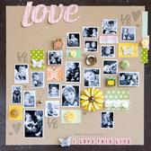 1   love   susan weinroth