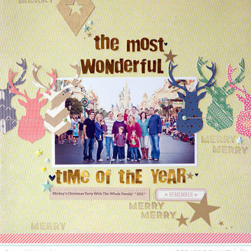The most wonderful time of the year   susan weinroth