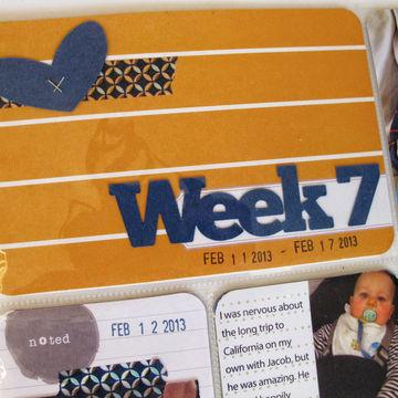 Wk7 detail web