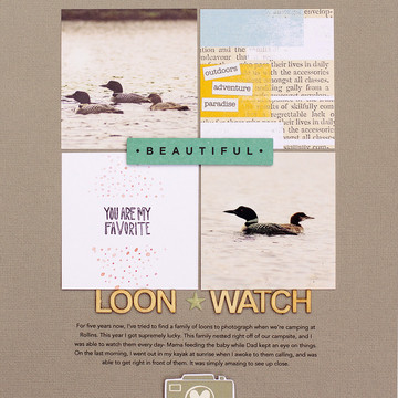 Loon watch web final