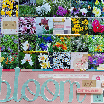 Bloom by jennifer larson sbc