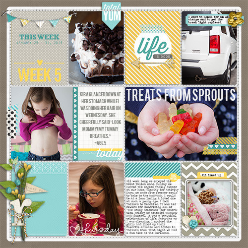 Project Life Ideas 2015 Project Life 2015 Week 5 w