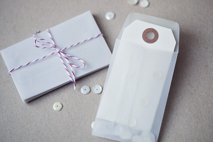Picture 2 of Vellum Coin Envelopes