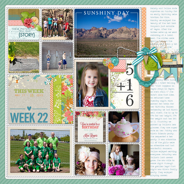 Project Life Ideas 2015 Project Life 2015 Week 22 w