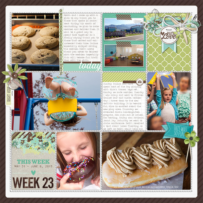 Project Life Ideas 2015 Project Life 2015 Week 23 w