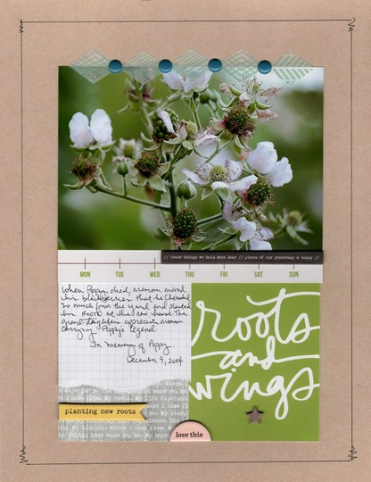 Roots and wings nicole martel ali edwards story kit original
