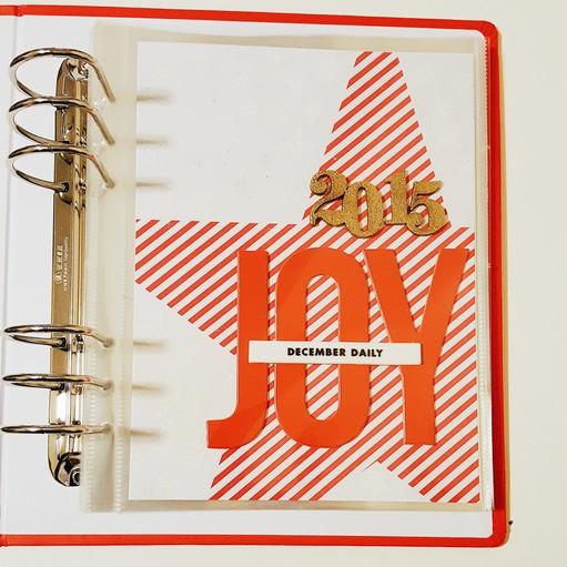 Dd15 cover reduced original