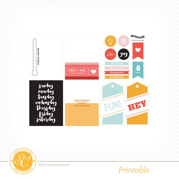Carolina S Cake Design Store Frosinone : Scrapbooking Kits, Paper & Supplies, Ideas & More at