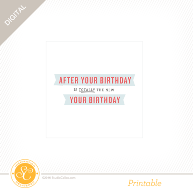 28420 sc storyboard cards belated birthday preview