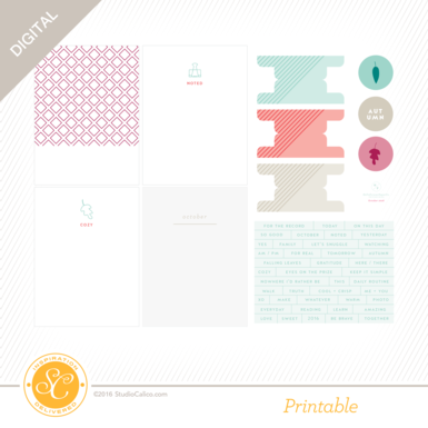 28435 sc story board printables mp preview