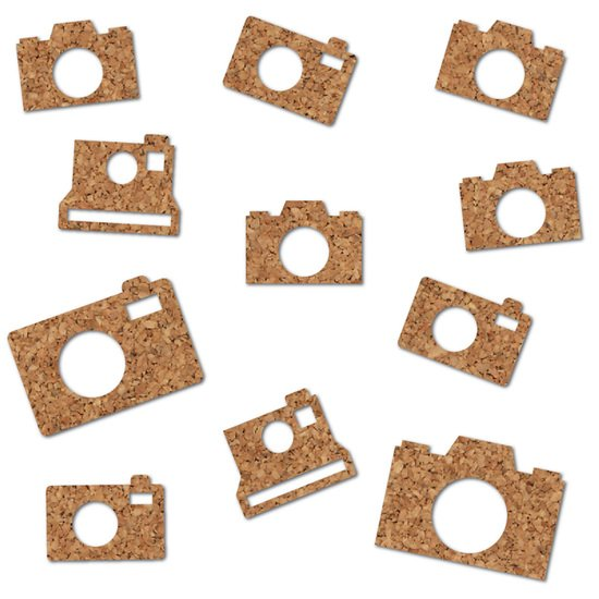 Essentials Cork Cameras