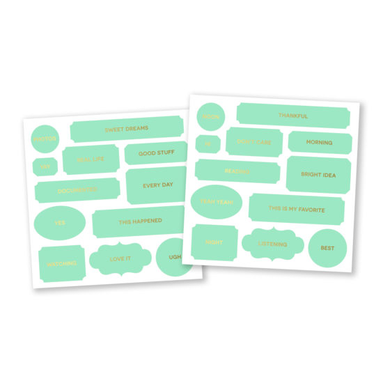 Color Theory Die Cut Labels : Mint Hint