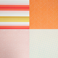 Picture of SC Patterned Paper - February 2014