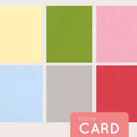 Picture of More Color Card - February 2014