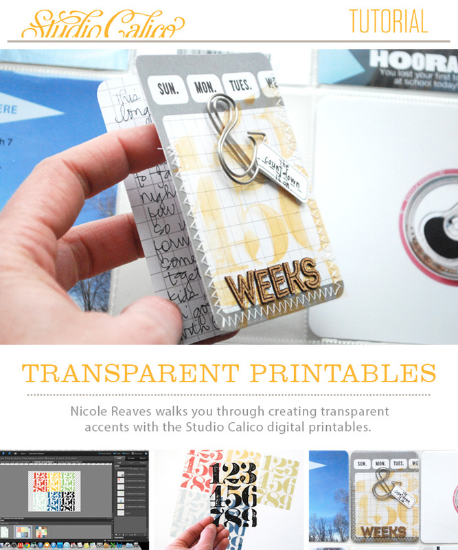 picture about Printable Transparency identified as Site: Clear Printable Accents Manual Nicole