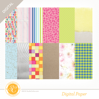 Sc scout 12x12papers preview
