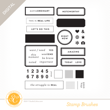 30069 sc birdsandbees 6x8 stamp label template preview