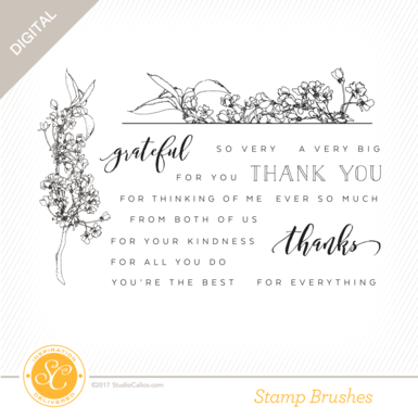 34539 sc starlight stamps floral thank you preview