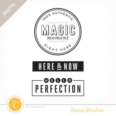 34544 sc starlight stamps magic moment preview