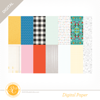 36373 sc summit 12x12papers preview