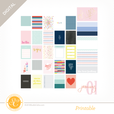 42843 sc fresh start journal cards main side a preview update